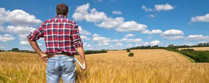The Miracle Farm Blueprint Discount
