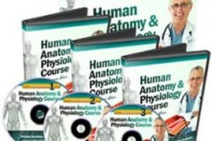Human Anatomy & Physiology Course