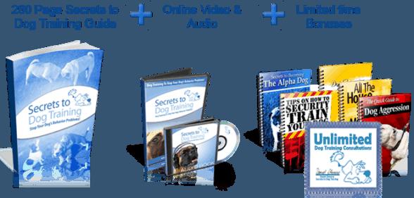 Secrets To Dog Training Discount