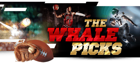 The Whale Picks Cover