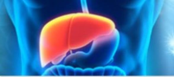 Fatty Liver Remedy Discount
