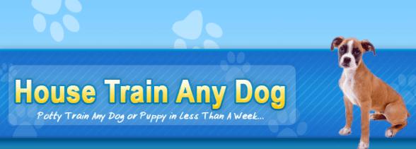 House Train Any Dog Discount