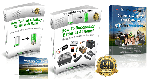 EZ Battery Reconditioning Bonus Package