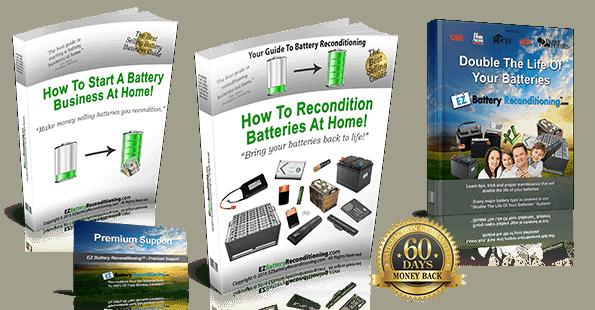 EZ Battery Reconditioning Bonus Package