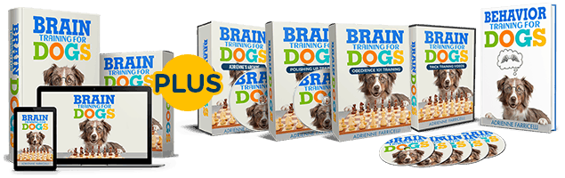 Brain Training for Dogs Modules
