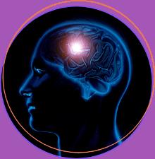Brain Stores Memories
